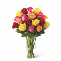 The FTD Bright Spark Rose Bouquet E4-4809